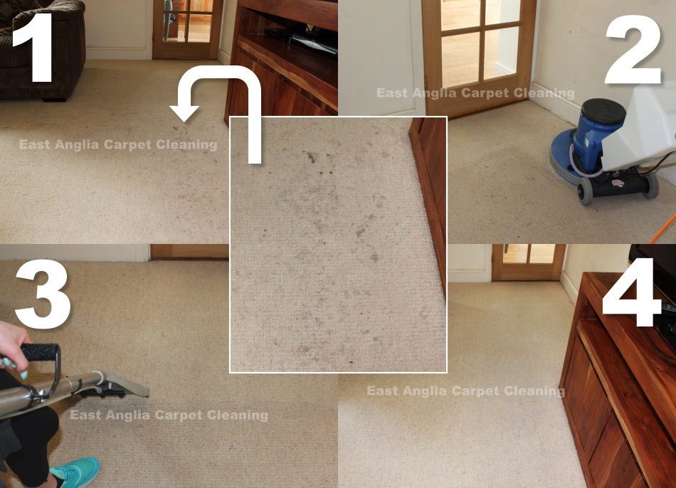 carpet_stain_removal
