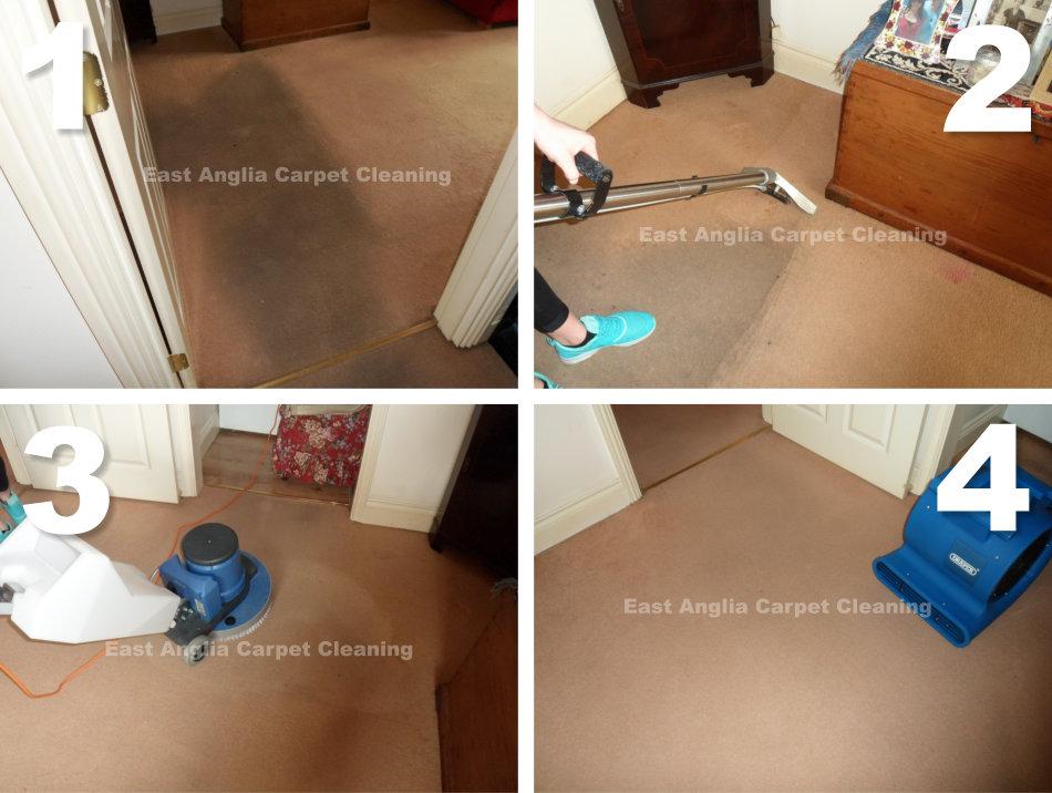 heavy_soiled_carpet